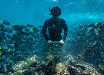 ©Yacht-Isabela-II-Snorkeling–1024×528
