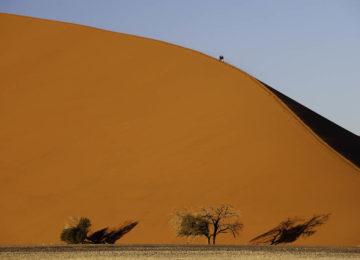 @Wilderness_Safaris_Namibia_Kulala_Desert_Lounge_Dana_Allen_Huegel