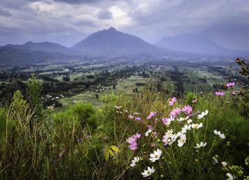 @Wilderness_Safaris_Ruanda_Bisate_Lodge_Dana_Allen_Blume