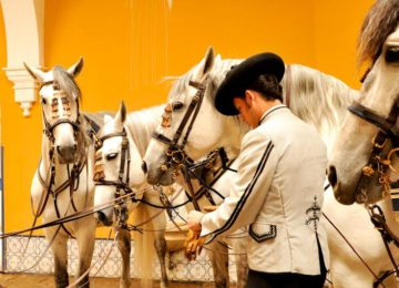 Königlich-Andalusische-Reitschule-Jerez-©-Royal-Andalusian-School-of-Equestrian-Art
